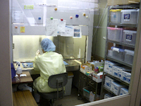 薬剤部の風景